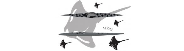 M.Ray